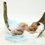 Babyshooting im Palmblatt