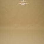 Hintergrund braun-beige 272 cm