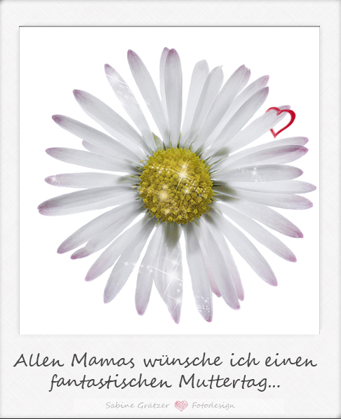 Allen Mamas wünsche ich einen fantastischen Muttertag...